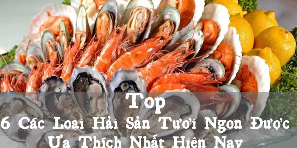 Top 6 Cac Loai Hai San Tuoi Ngon Duoc Ua Thich Nhat Hien Nay
